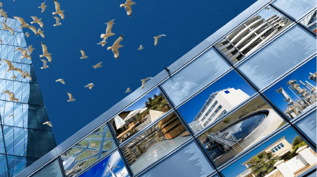 Firmenprofil Der Toni Bird Control Solutions Gmbh Co Kg Bei