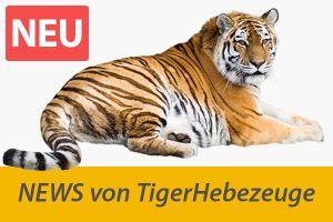 TigerHebezeuge_news_300x200.jpg